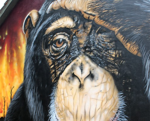 graffiti-affe-bener1-detail