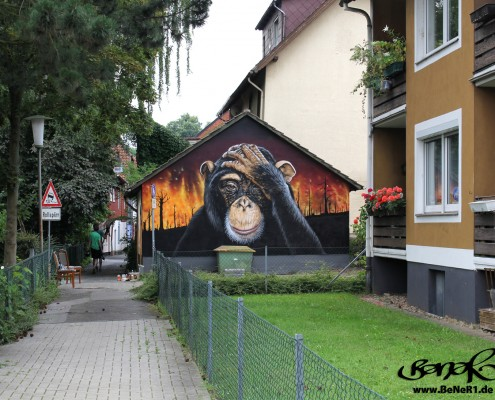 graffiti-affe-bener1-wide